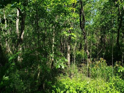 Brazoria Residential Lots & Land For Sale: Lot 85 Ash Drive