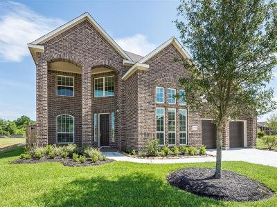 Tomball Single Family Home For Sale: 12114 Brighton Brook Lane