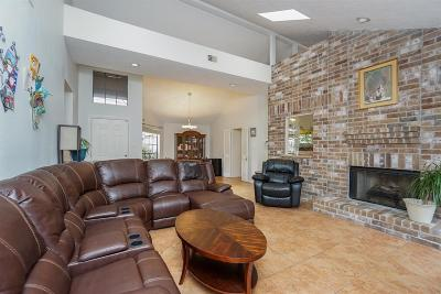 Sugar Land Single Family Home For Sale: 3211 Mesquite Drive