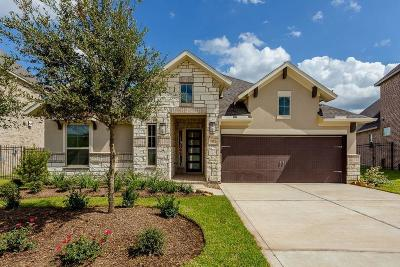 The Woodlands Single Family Home For Sale: 30 Botanical Vista Drive