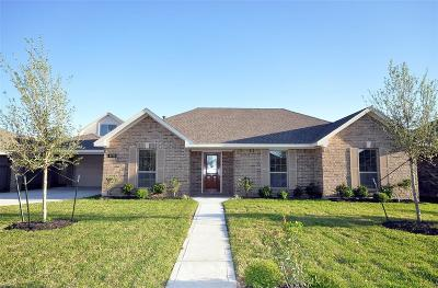 Manvel Single Family Home For Sale: 6738 Conroe Circle