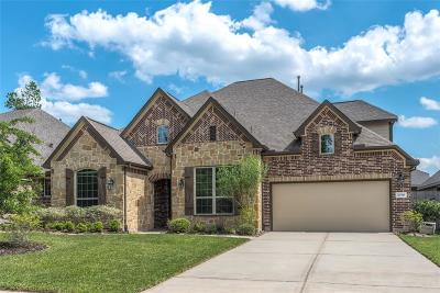 New Caney Single Family Home For Sale: 23310 Rich Plaza Drive