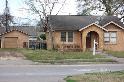 Sugar Land Single Family Home For Sale: 407 Lakeview Drive
