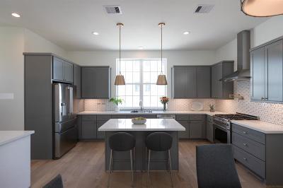 Houston Single Family Home For Sale: 3511 Ridgeway Valley Lane