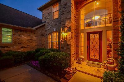 Katy Single Family Home For Sale: 25615 Durango Falls Lane