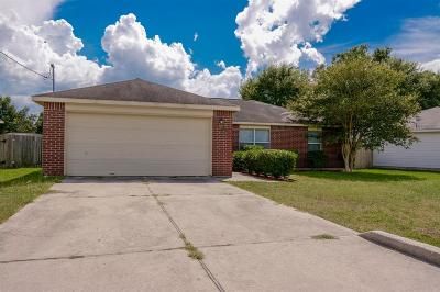 Conroe Single Family Home For Sale: 16340 Sun View Lane