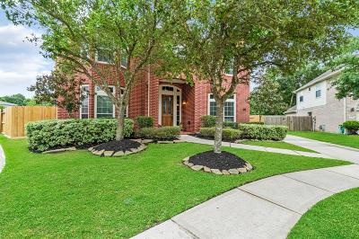 Tomball Single Family Home For Sale: 15802 Maple Falls Court