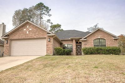 Willis Single Family Home For Sale: 12389 Sagittarius Drive E