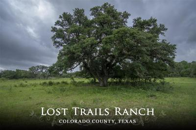 Colorado County Country Home/Acreage For Sale: County Road 215