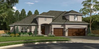 Cypress Single Family Home For Sale: 13319 Via Torre De Pisa
