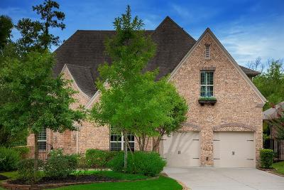 Single Family Home For Sale: 238 Greylake Place