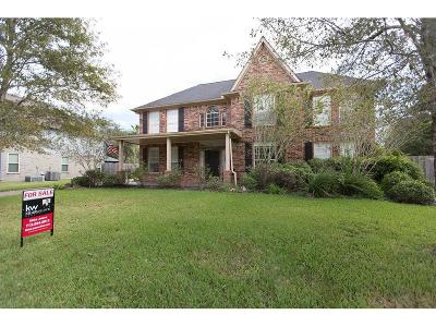 Friendswood Single Family Home For Sale: 1406 Oak Hollow Drive