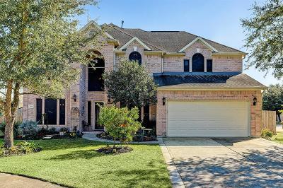 Dickinson Single Family Home For Sale: 2446 Kilgarney Keep Street
