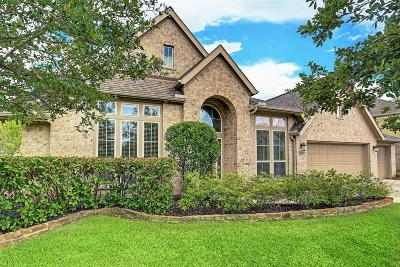 Pearland Single Family Home For Sale: 3403 Leafstone Lane