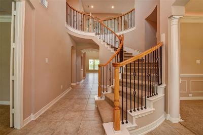 Friendswood Single Family Home For Sale: 3120 Richard Lane