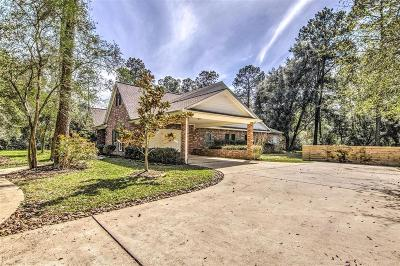 Tomball Single Family Home For Sale: 11015 Albury Park Lane