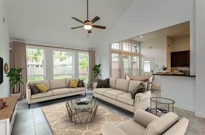 Sugar Land Single Family Home For Sale: 658 Clarenda Falls Drive