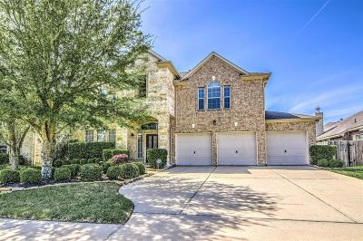 Pearland Single Family Home For Sale: 2506 Dry Bank Lane