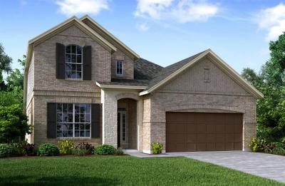 Rosenberg Single Family Home For Sale: 9015 Japonica Drive