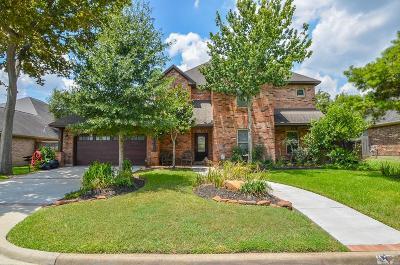 Houston Single Family Home For Sale: 2014 Baker Trl