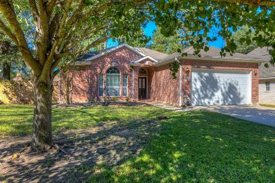 Montgomery Single Family Home For Sale: 3135 Fitzgerald Drive