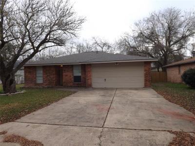Dickinson Single Family Home For Sale: 3912 Easy Street