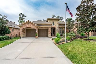 Conroe Single Family Home For Sale: 2416 W Village Green Circle