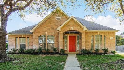 Houston Single Family Home For Sale: 9210 Point Park Drive
