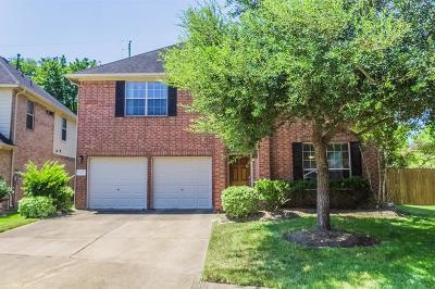 Houston Single Family Home For Sale: 614 Caitlyn Court