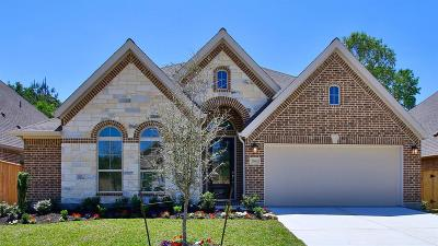 New Caney Single Family Home For Sale: 23662 Kenworth Drive