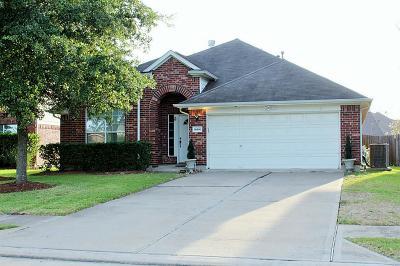 Houston Single Family Home For Sale: 16506 Great Oaks Glen Drive