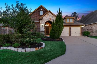 The Woodlands Single Family Home For Sale: 6 Sleeping Colt Place