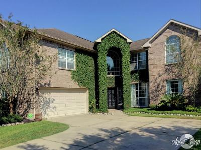 Pearland Rental For Rent: 3107 E Cedar Hollow Drive
