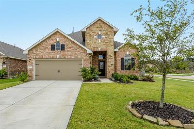 Fort Bend County Single Family Home For Sale: 2202 Leonetti Lane