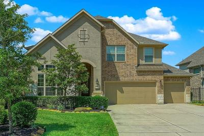 The Woodlands Single Family Home For Sale: 51 Lindenberry Circle