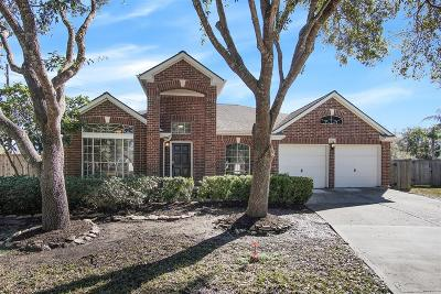 Sugar Land Single Family Home For Sale: 1707 Bumelia Court