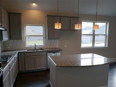 League City Single Family Home For Sale: 3060 Bellflower Pass Lane