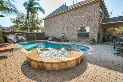 Lake Jackson Single Family Home For Sale: 116 Canyon Oak Drive