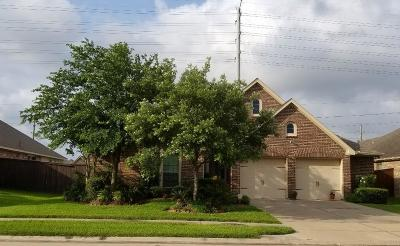 Pearland Single Family Home For Sale: 13705 Rainwater Drive
