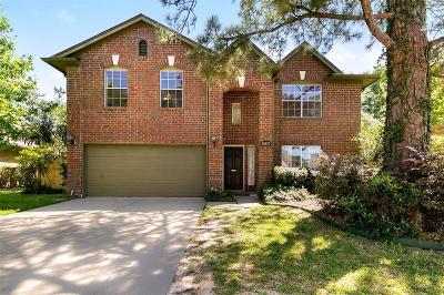 Katy Single Family Home For Sale: 20427 Drakewood Drive