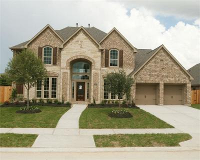 Pearland Single Family Home For Sale: 2403 Copper Sky Drive