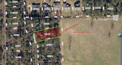 Willis Residential Lots & Land For Sale: Lot 63 Brazos Drive