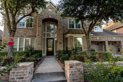 Sugar Land Single Family Home For Sale: 822 Delford Way