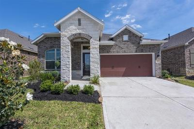 Jersey Village Single Family Home For Sale: 121 Saddle