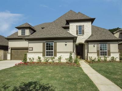 Sugar Land Single Family Home For Sale: 4111 Stoneglen Terrace