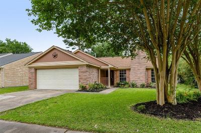 Houston Single Family Home For Sale: 9511 W Savile Circle