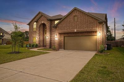 Tomball Single Family Home For Sale: 22814 Alderdale Lane