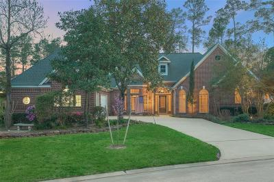 The Woodlands Single Family Home For Sale: 42 N Morning Cloud Circle