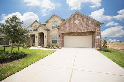Katy Single Family Home For Sale: 6630 Windy Hills Lane