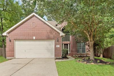 The Woodlands Single Family Home For Sale: 42 Bryce Branch Circle